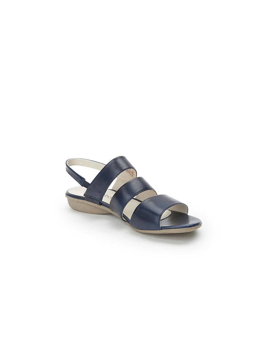 Maisy S Mutts Sandal Wedges Zr01 Tan Beleuchtungszonen Der Erde Tabelle