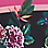 Orchidee/Multicolor-934318