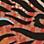 Multicolor-104380