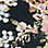 Schwarz/Multicolor-144055