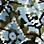Dunkelpetrol/Multicolor-871700