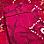 cyclamen/multicoloured-903792