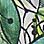 Grün/Multicolor-616649