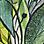 grön/flerfärgad-119373