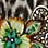 moka/multicolore-107584