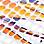 Ecru/Multicolor-395145
