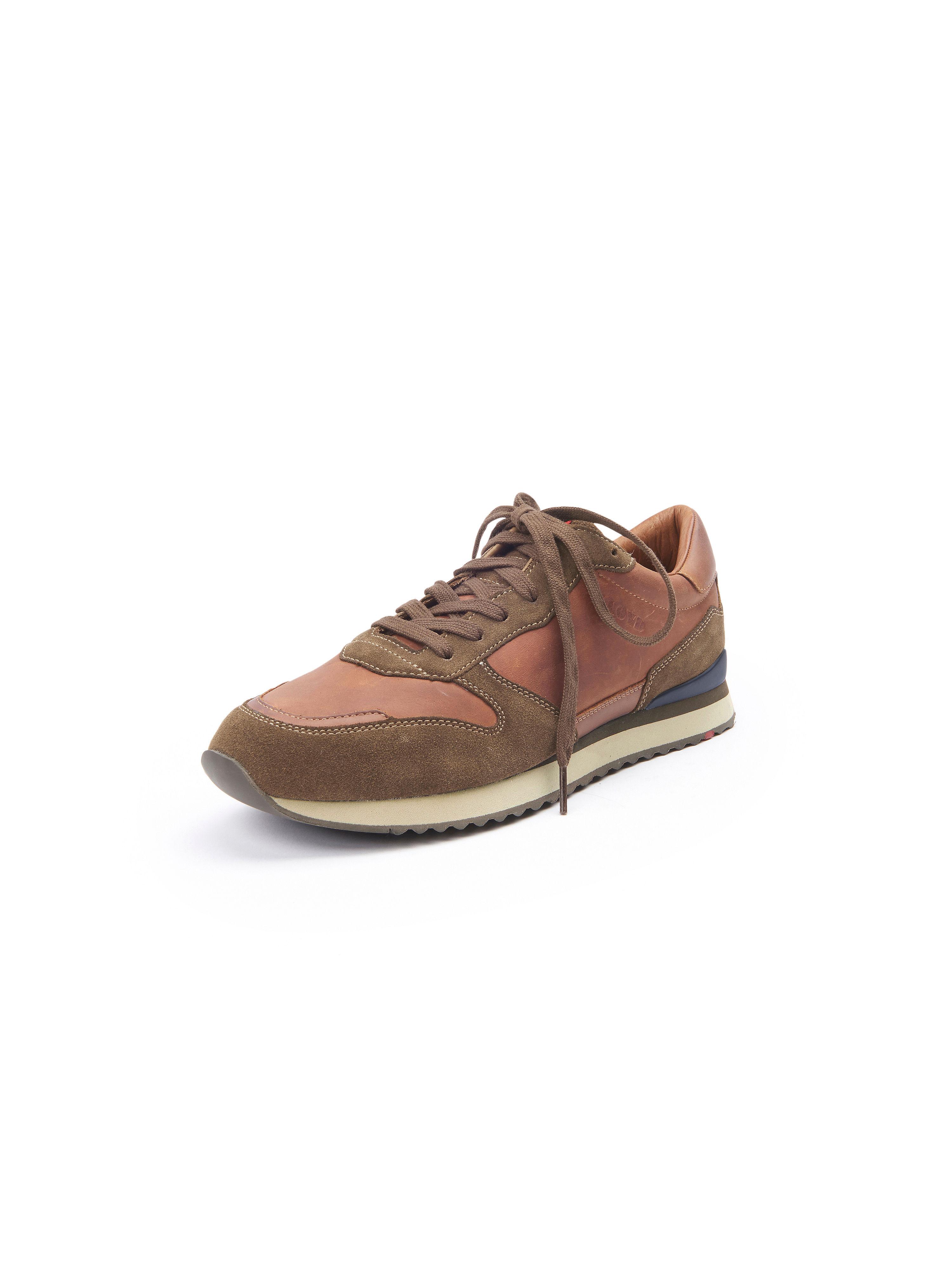 Sneakers Edwin Van Lloyd bruin