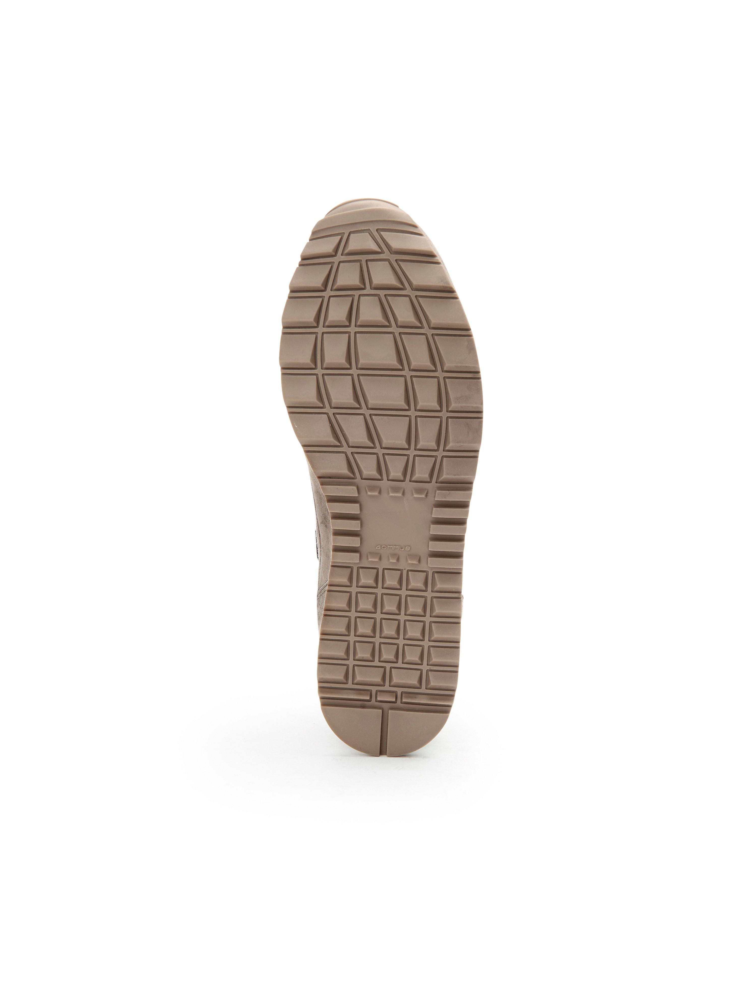 Hassia aus - Sneaker Barcelona H aus Hassia 100% Leder - Taupe Gute Qualität beliebte Schuhe c2b62b