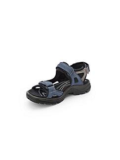 229b5ce7ae85 Schuhe online kaufen   Damenschuhe bei Peter Hahn