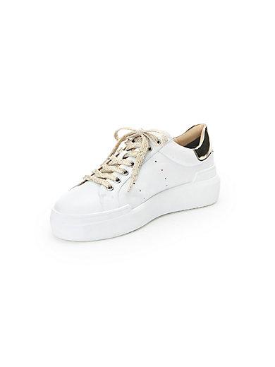 Bogner - Sneaker Hollywood 1