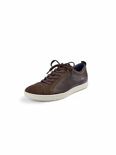 Ecco - Les sneakers