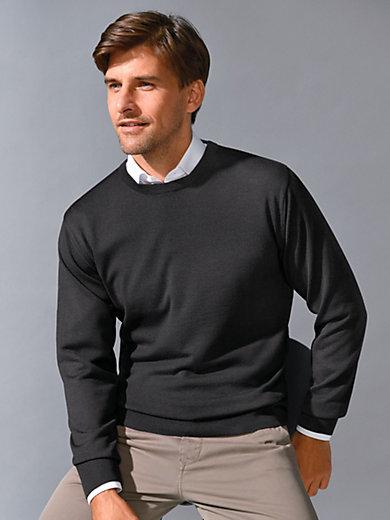 Peter Hahn - Le pull en pure laine vierge, modèle CLEMENT